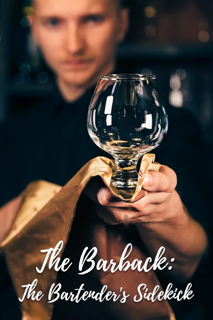 Barback Guide