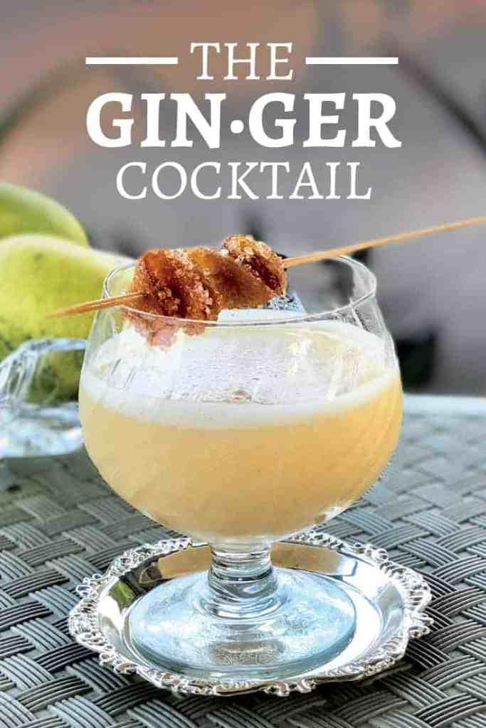 Ginger Cocktail by Gitanjali Budhrani