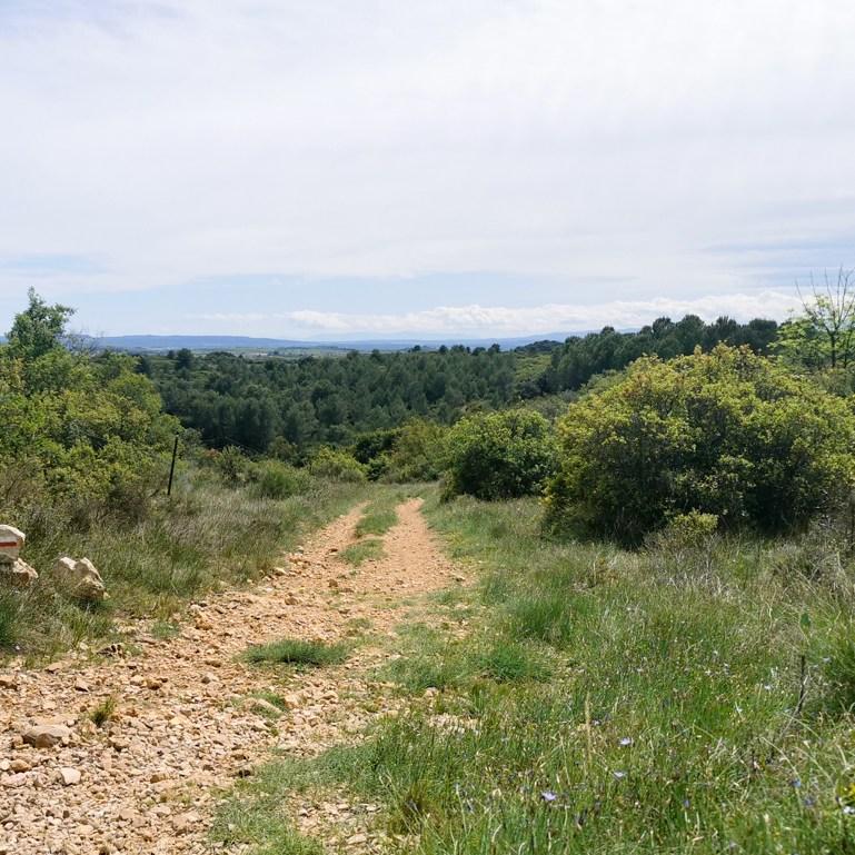 chemin-saint-jacques-compostelle-languedoc