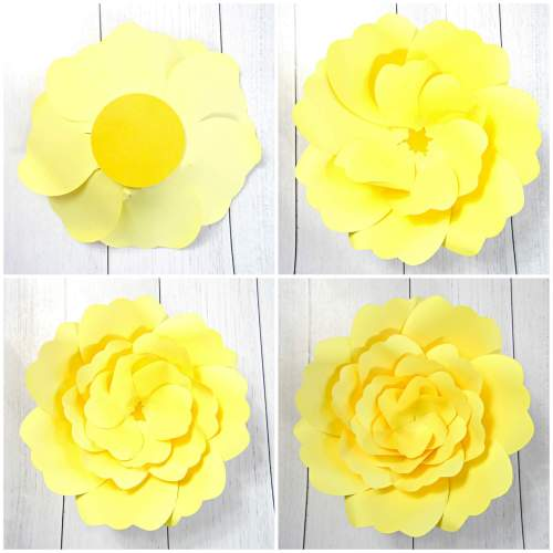 large-paper-flowers