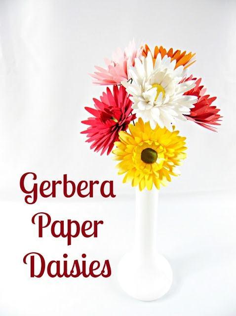 gerbera paper daisies