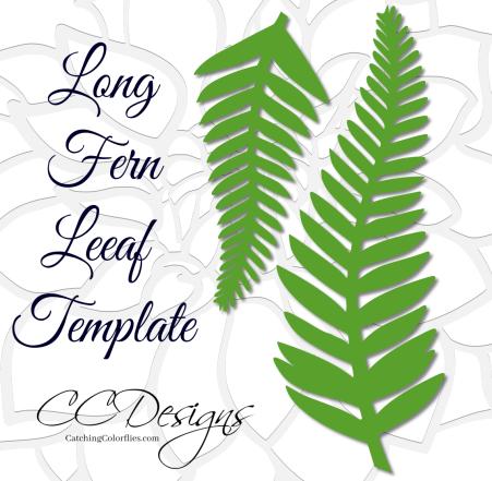 Fern leaf paper vine