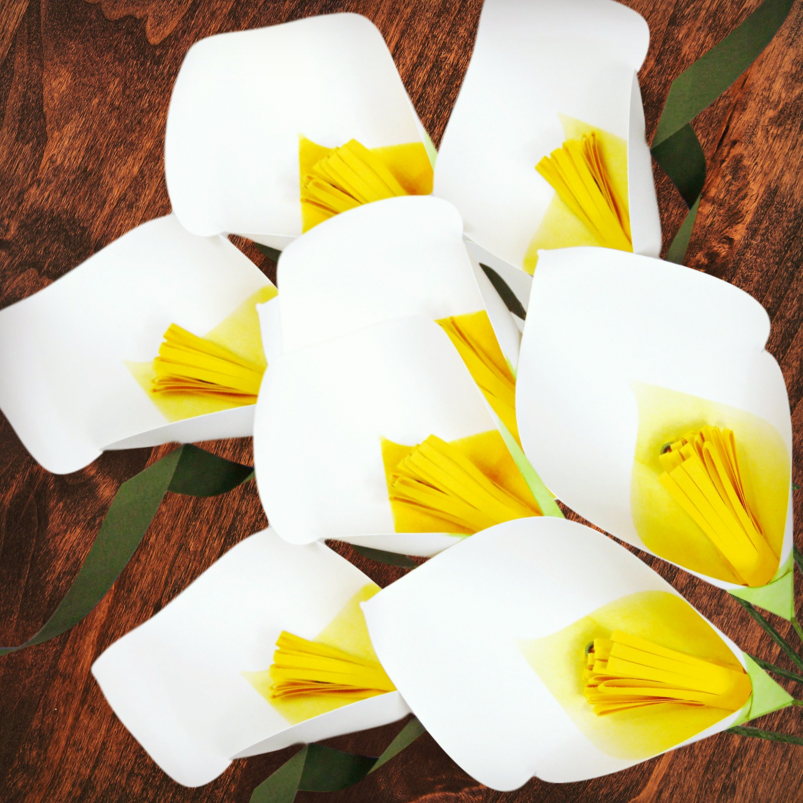 Freebie Friday- Welcome Springtime with Calla Lilies