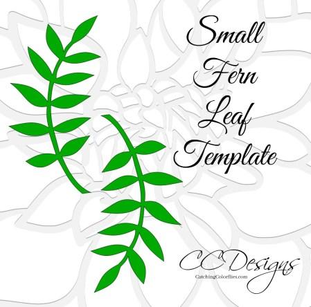 small fern leaf vine