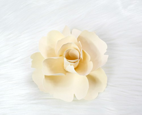 Bella Rose DIY Paper Flower Tutorial