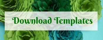 Paper succulent templates