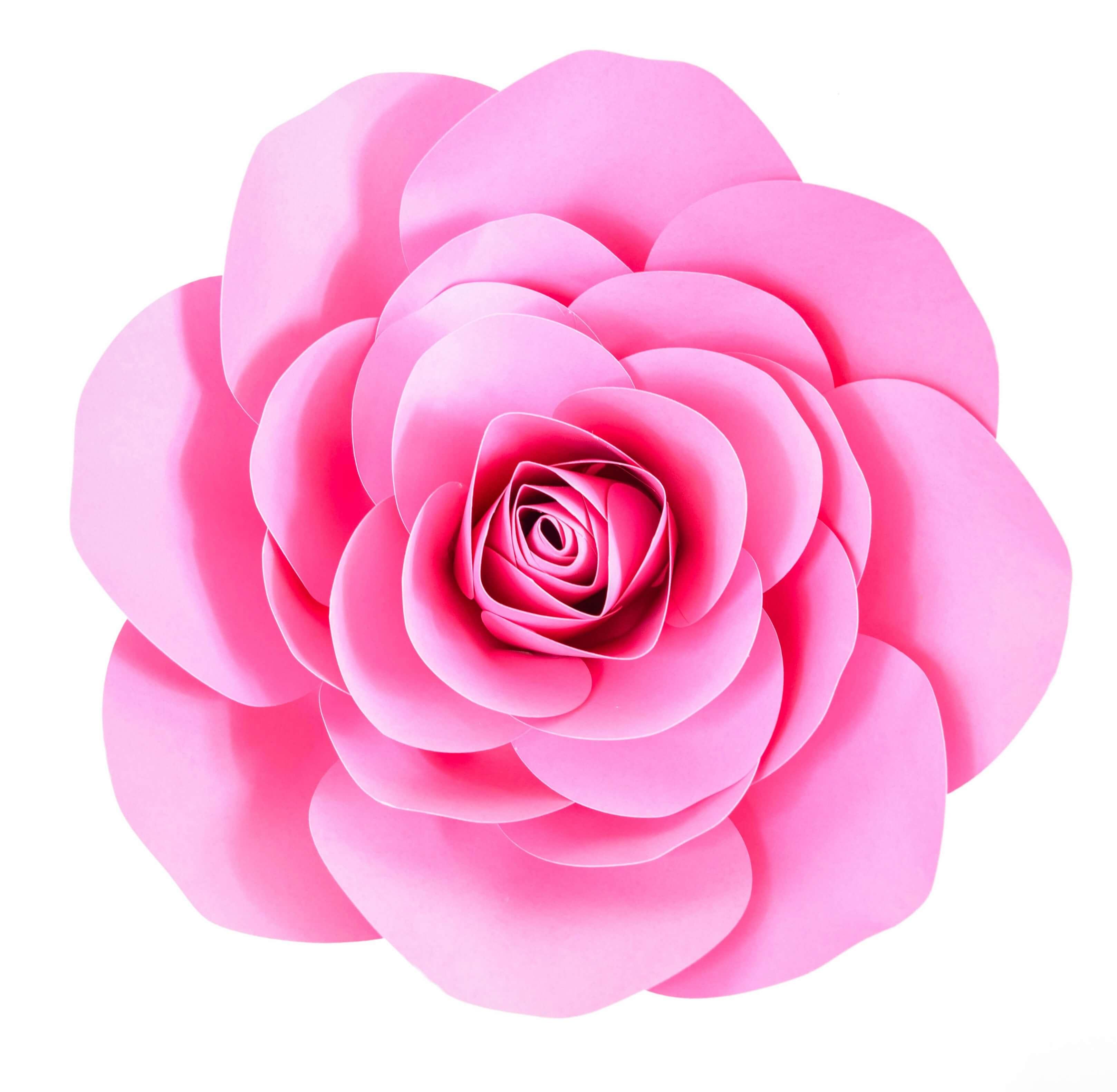Free Large Paper Rose Template: DIY Camellia Rose Tutorial