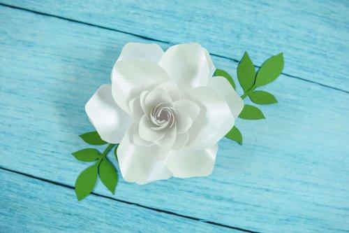 DIY gardenias
