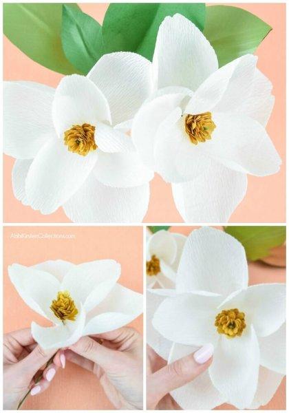 DIY Crepe Paper Magnolia Flowers.