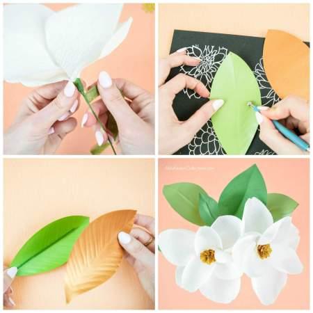 Magnolia paper flowers.