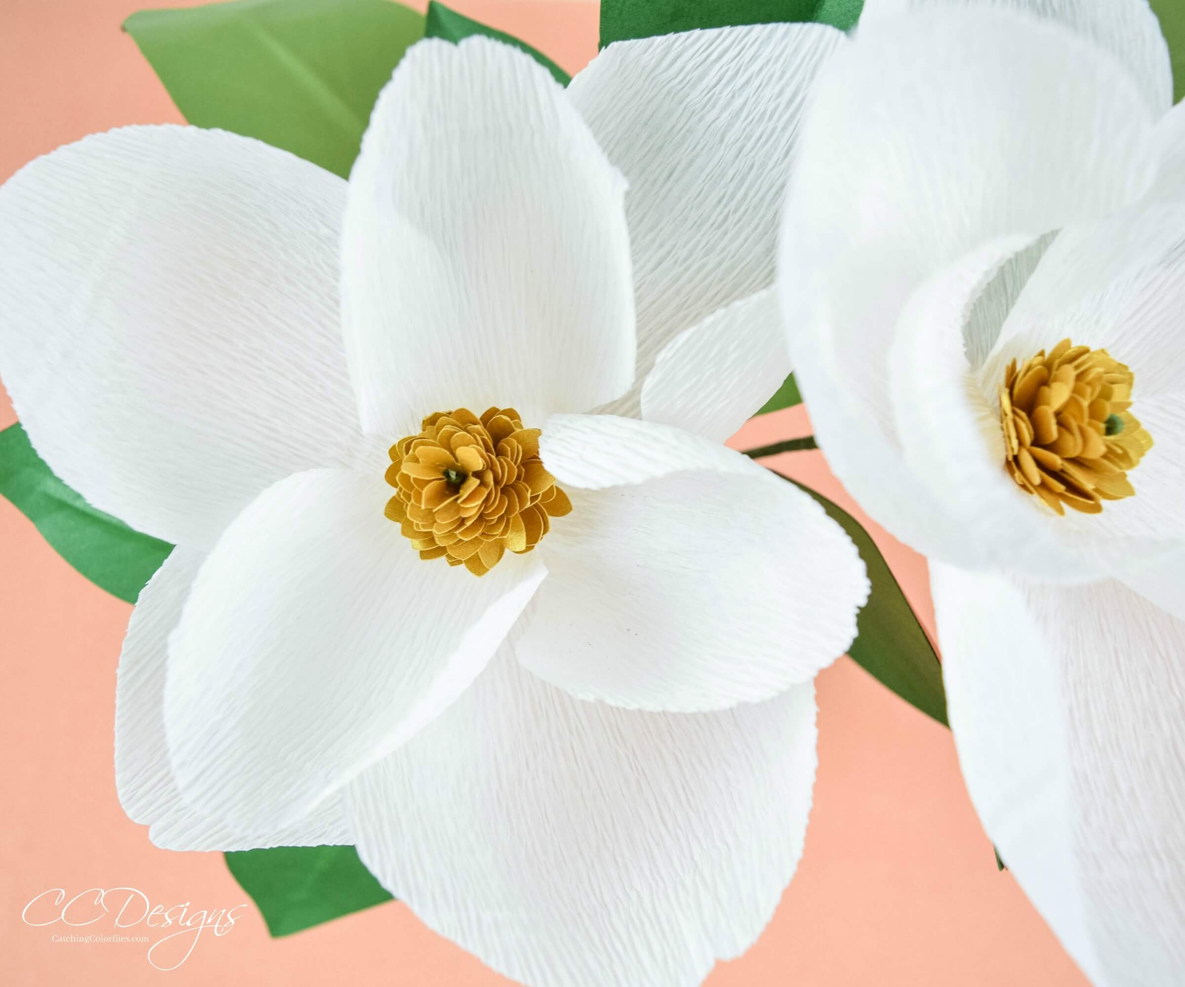 Diy Crepe Paper Magnolia Flowers Crepe Flower Templates Abbi