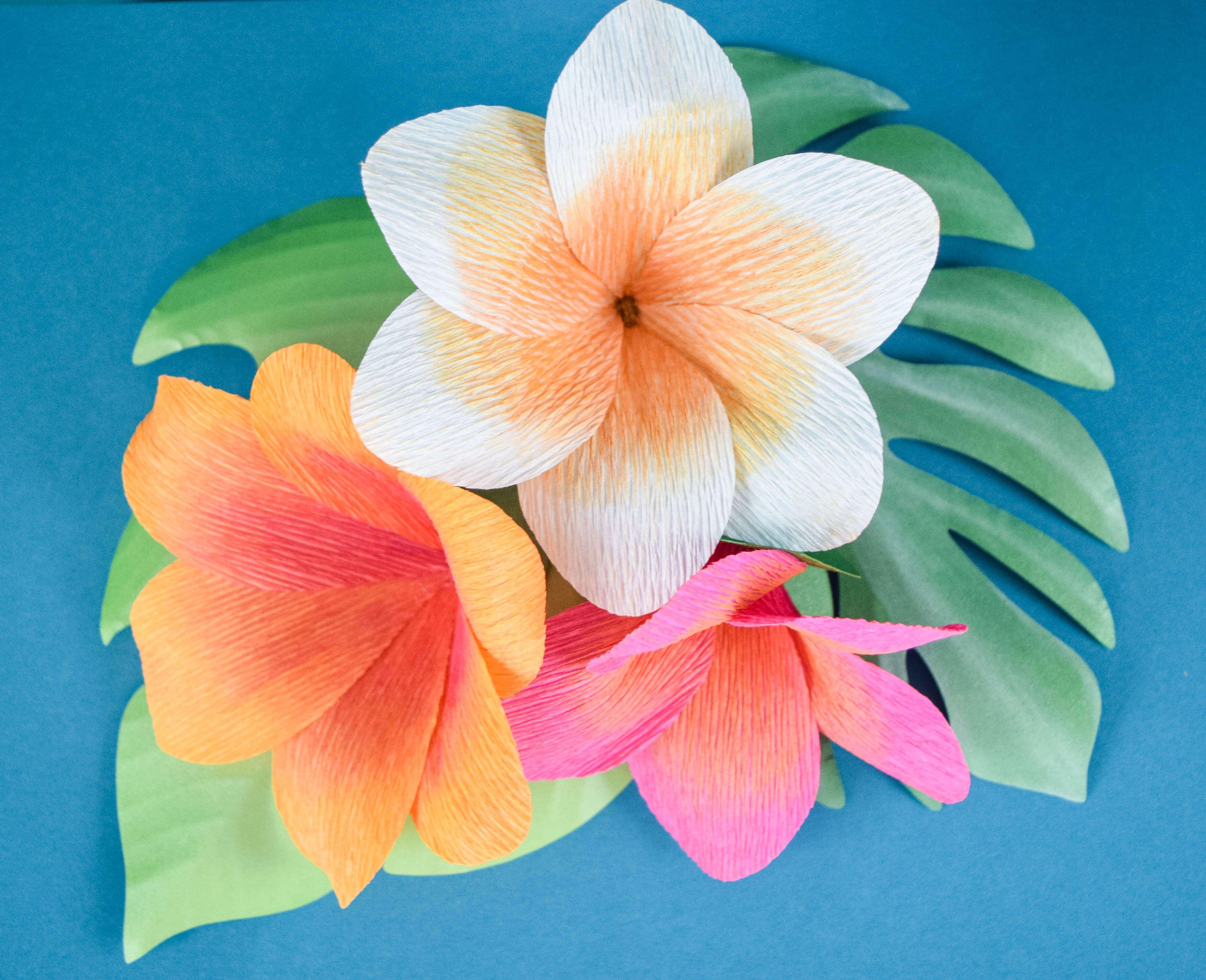 DIY Crepe Paper Plumeria Flowers
