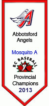 Mosquito A Provincial Champions 2013