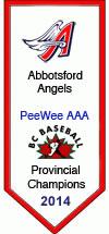 Peewee AAA 2014 Provincial Champions