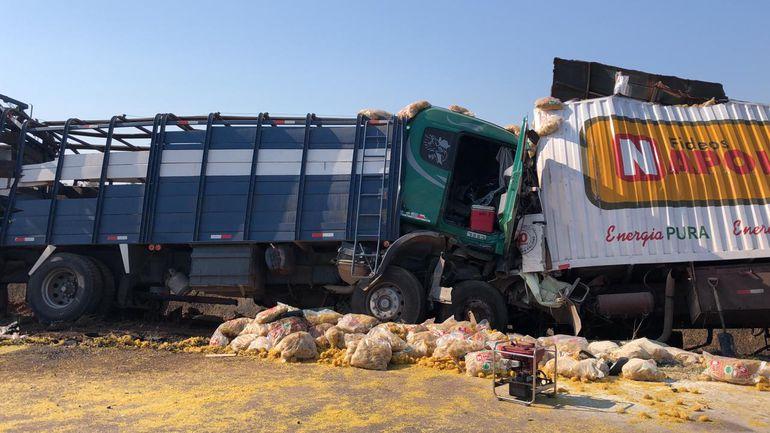 Los camiones de gran porte colisionaron de manera frontal.
