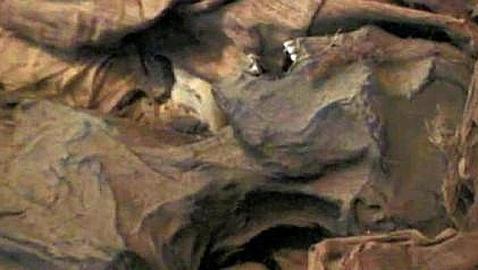 La momia que tenía cáncer de próstata