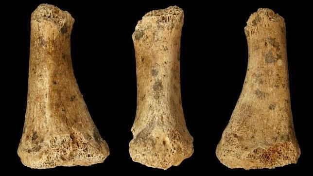 Los últimos neandertales residieron en Cantabria y no en Gibraltar