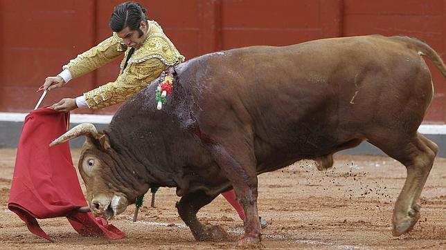 Morante abrocha temporada el 6 de octubre en Zafra