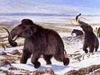 Un impacto cósmico causó un cambio climático catastrófico hace 12.000 años