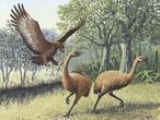 El águila devoradora de hombres fue real