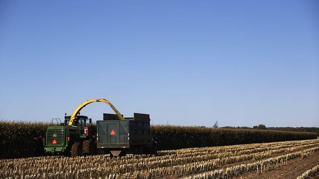 China compra el 5% del territorio de Ucrania para cultivar