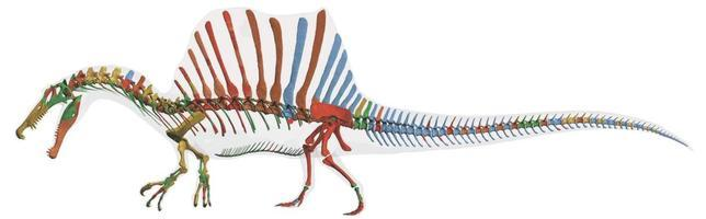 Spinosaurio