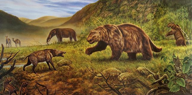 Los elefantes que habitaron el Ártico
