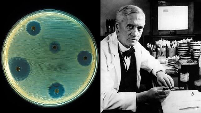 Resultado de imagen de penicilina fleming