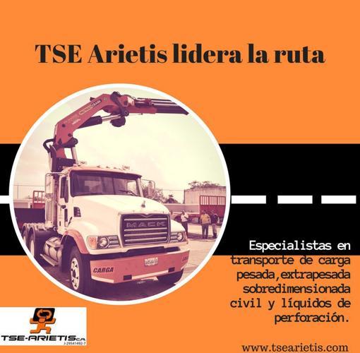 Información promocional de la empresa TSE Arietis