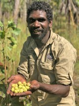 An Aboriginal man with a handful of Kakadu plums smiles at the camera.