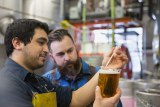 Two men testing beer in a brewery