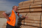A man in a hi-vis vest standing in front of some bundles of fence posts.