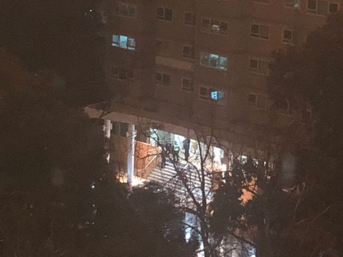 Police are pictured in a grainy image of a Flemington apartment.