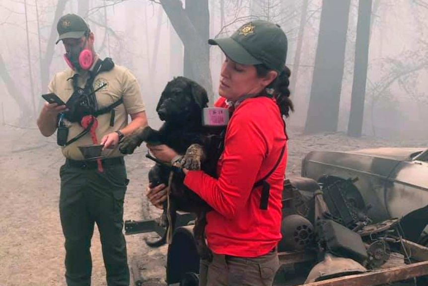 A woman in a red shirt holds a black dog which has been rescued from a destroyed house.