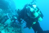 Monitoring heated settlement panels using SCUBA at 15 m depth at Rothera Research Station, Antarctica