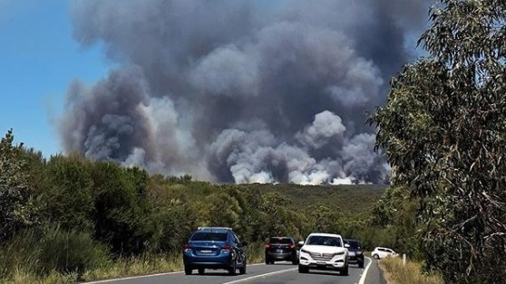 Emergency warning issued for fires in Sydney's Royal National Park