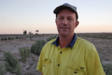 David Thompson standing in front of rows of saltbush