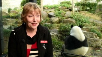 Elaine Bensted talks about the zoo's future