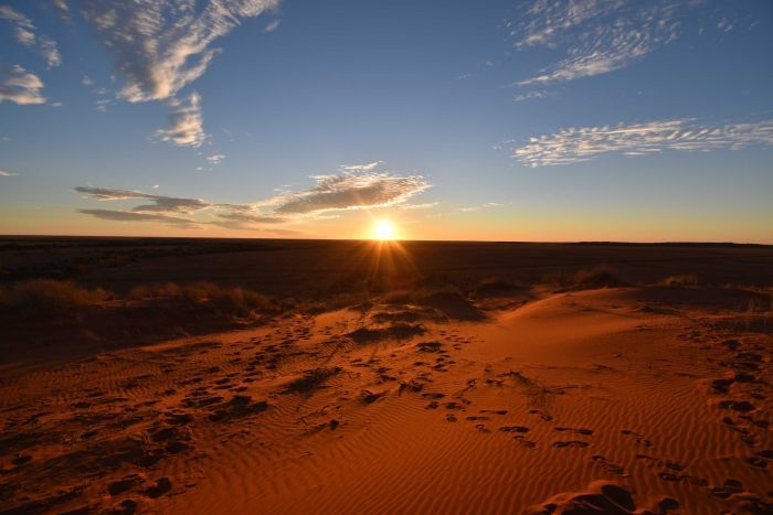 A golden sun beams above the horizon in the centre, with an orange sand dune with wind ripples in the foreground