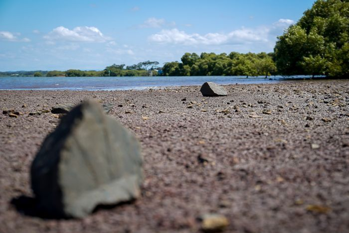 Some rocks on the ground at Toondah Harbour.