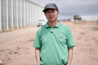 Henry Liu stands in front of a large glasshouse operation.