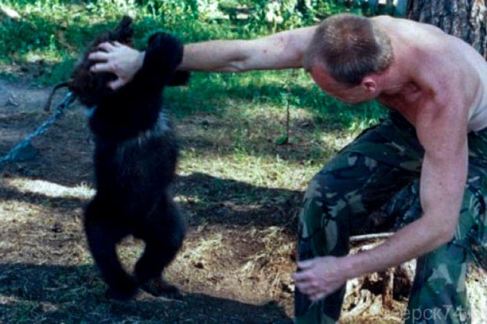 A man playing with a young bear cub.