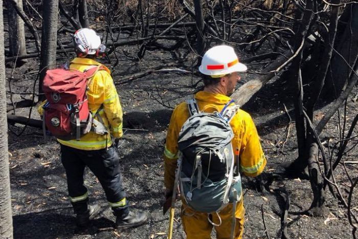 Firefighters surrounded by blackened bush in Tasmania