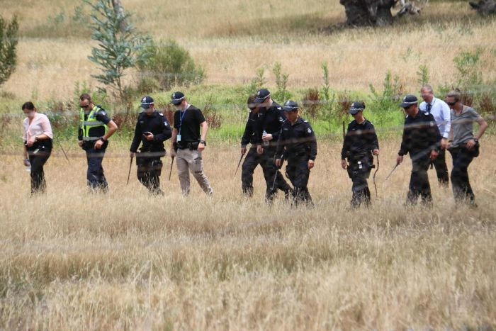 Police conduct a line search in grassland.