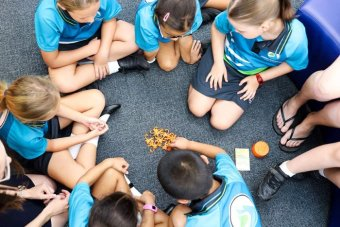New pre-seated children sit on the floor in a circle in the classroom preparing to play the monkey game at Spring Mountain State School.