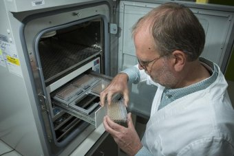 Scientist holds plastic container out of research safe in lab.