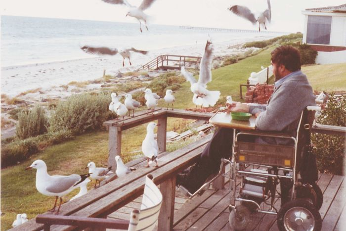 A man in a wheelchair on a balcony surrounded by seagulls and looking out at the ocean.