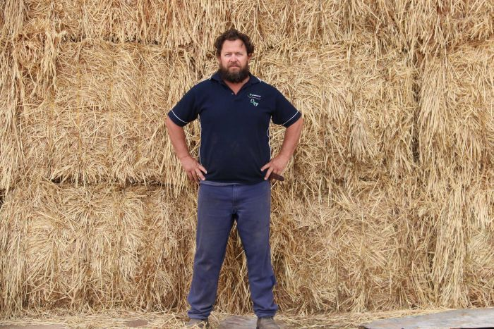 Steve Bolt stands in front of a haystack, his hands on his hips.