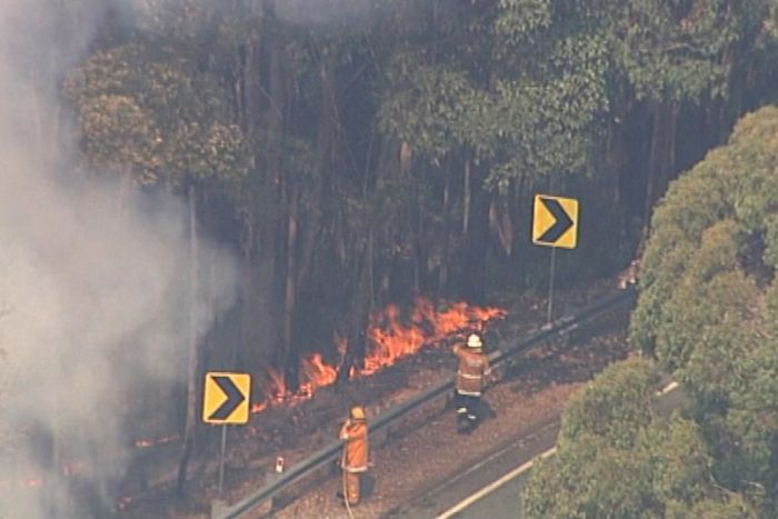 Aerial image of firefighters at a roadside fire front