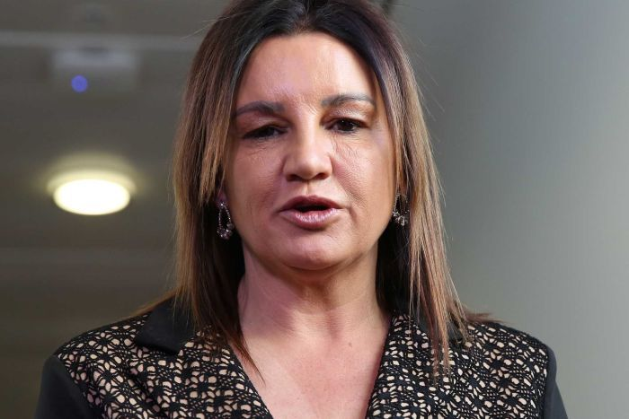 Jacqui Lambie stands at a press conference inside a corridor